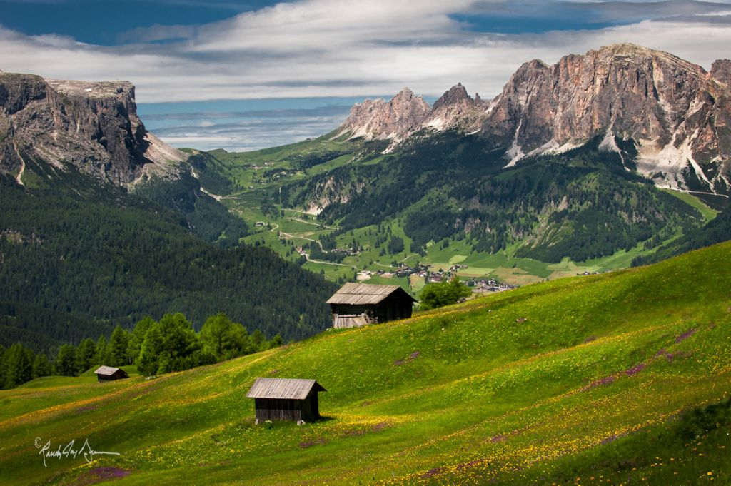 Name:  Dolomites_Meadows.jpg Views: 389 Size:  198.2 KB